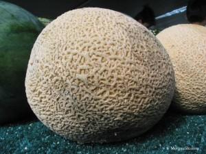 grow melons